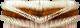 spazzola centrale misto acciaio.png