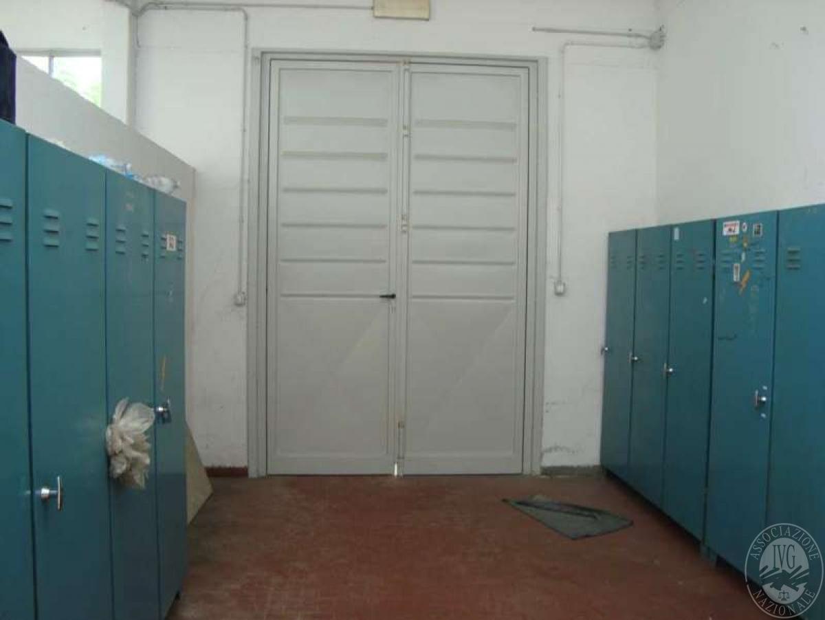Opificio a SINALUNGA, via Piave 6