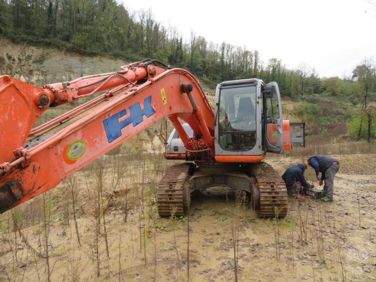 Escavatore Fiat Kobelco E215   GARA DI VENDITA SABATO 7 DICEMBRE 2019  VISIBILE IN SAN GIOVANNI VALDARNO (AR) 2