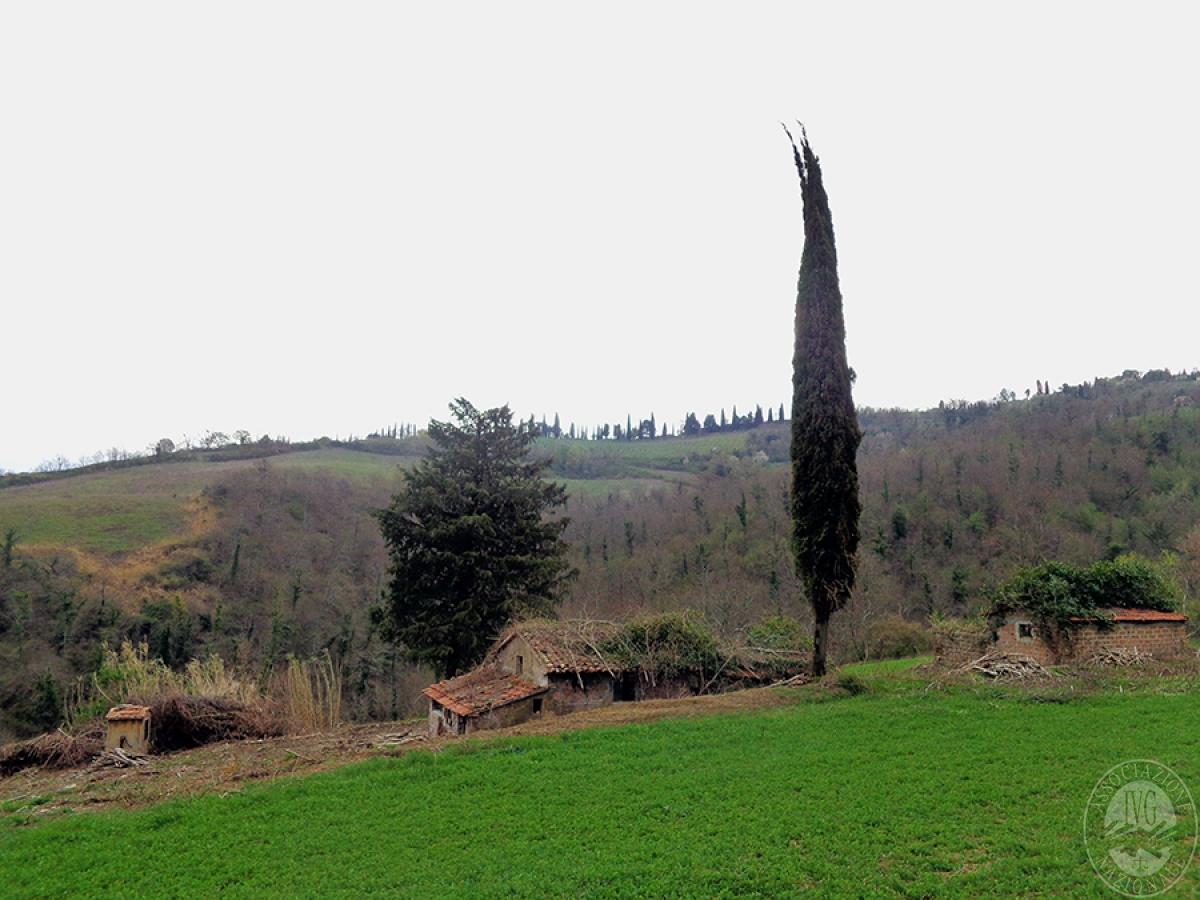 Terreni agricoli a SAN CASCIANO DEI BAGNI in loc. Celle sul Rigo