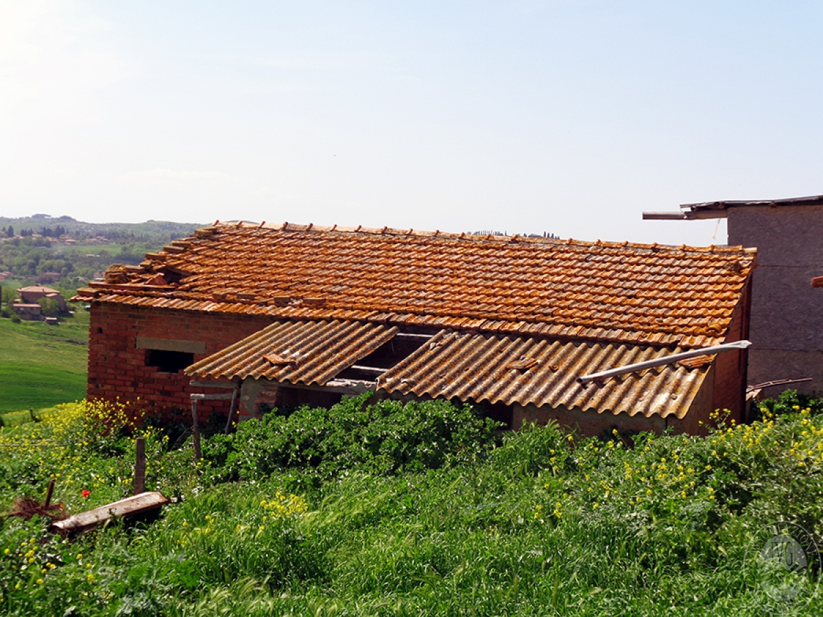 Podere e azienda agricola a MONTALCINO in fraz. San Giovanni d'Asso 24