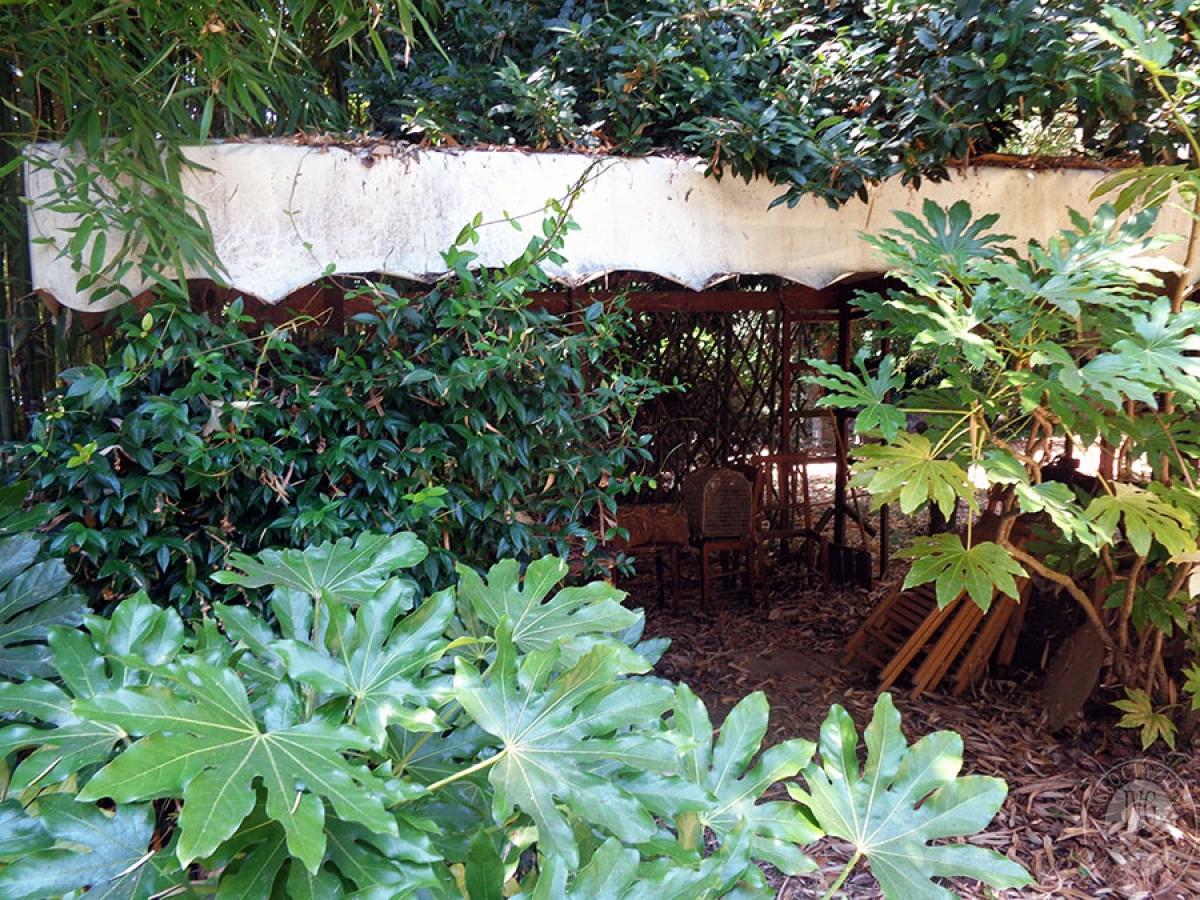 Appartamento, ristorante, terreni a MARCIANO DELLA CHIANA in Via dell'Esse 60