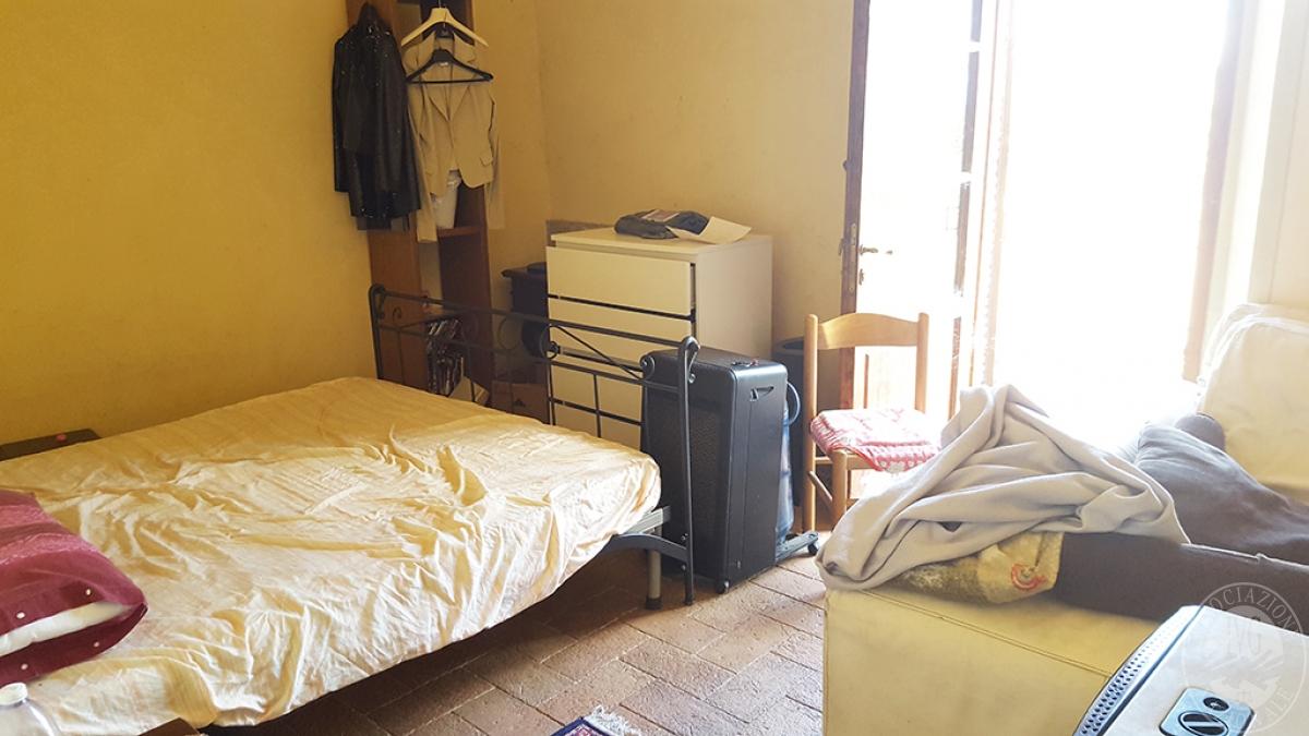 Colonica con terreni a CIVITELLA IN VAL DI CHIANA in loc. Querceto - Lotto 1A 4