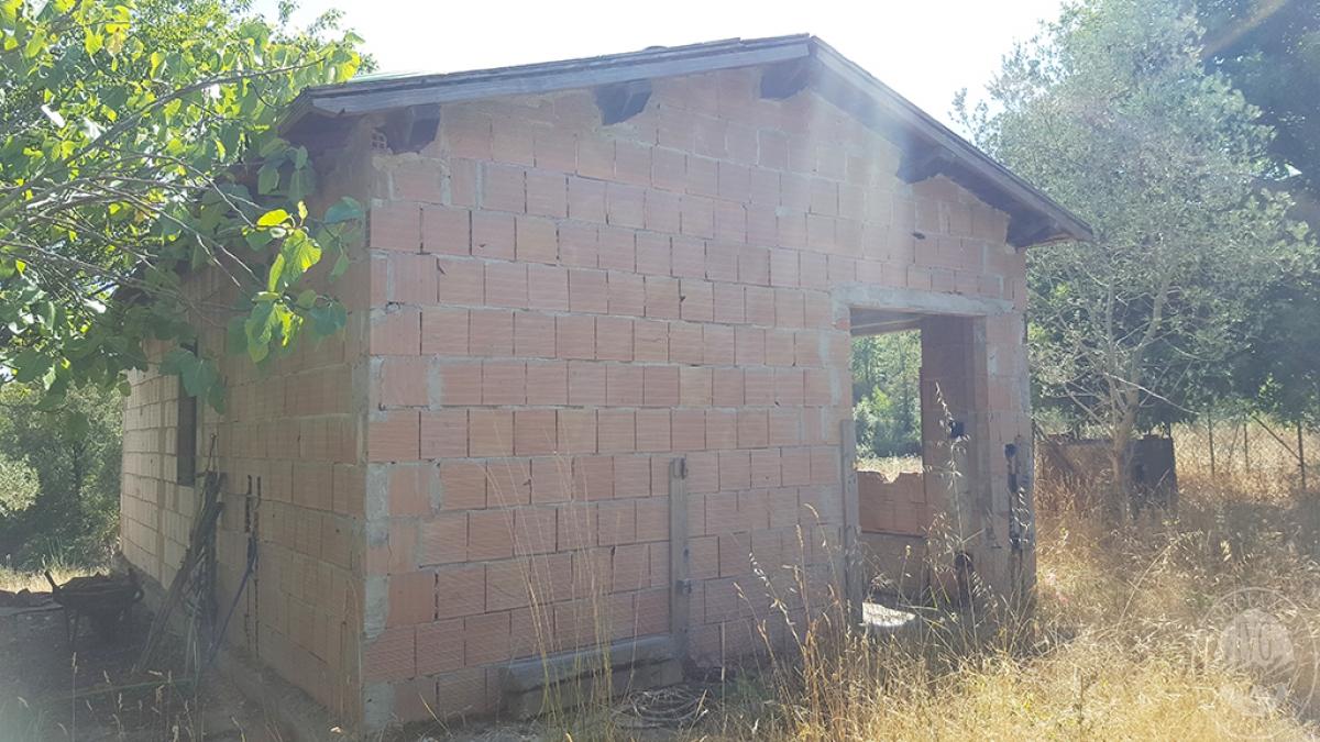 Colonica con terreni a CIVITELLA IN VAL DI CHIANA in loc. Querceto - Lotto 1A 15