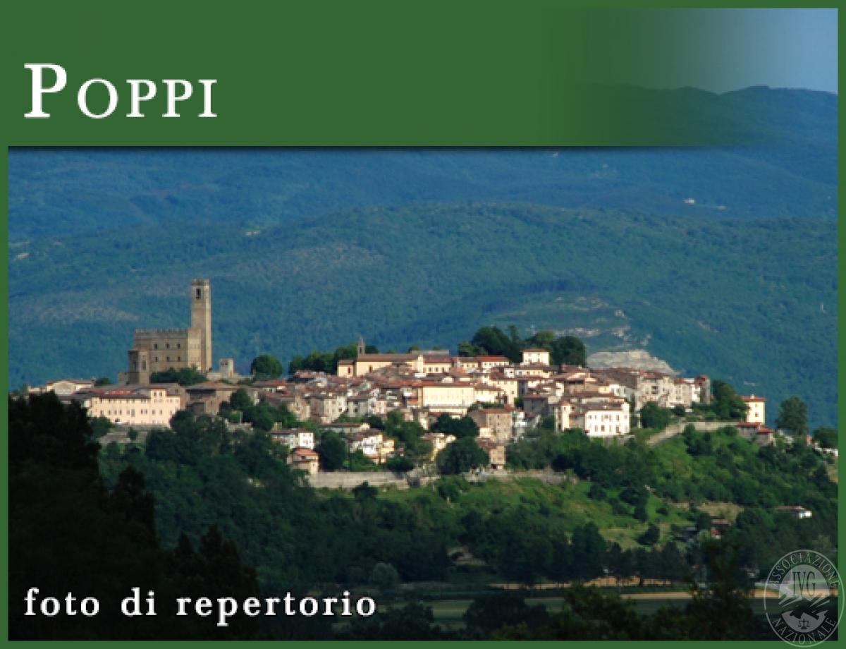 Terreni a POPPI e PRATOVECCHIO STIA - Lotto 4