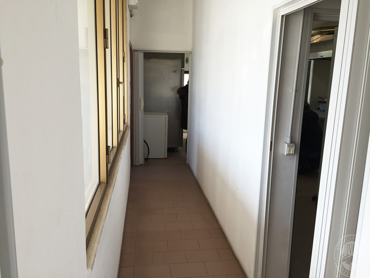 Laboratorio a MONTERONI D'ARBIA in Via Liguria - Lotto 2 3