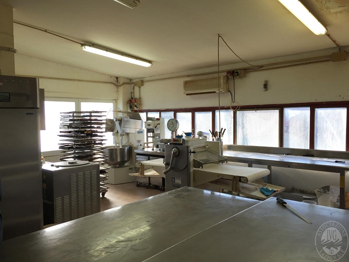 Laboratorio a MONTERONI D'ARBIA in Via Liguria - Lotto 2 5