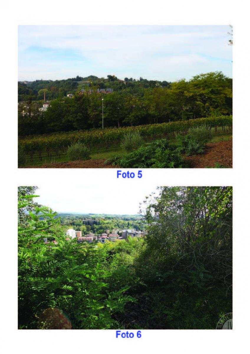 Terreni edificabili a COLLE VAL D'ELSA, località il Poggino - Lotto LA FABBRICHINA 3