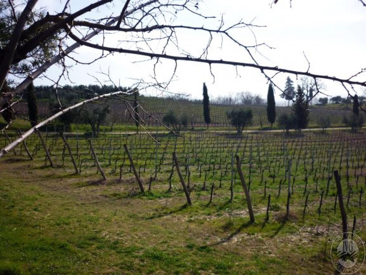 Cantine e terreni a CHIANCIANO TERME in Strada delle Cavine e Valli 24