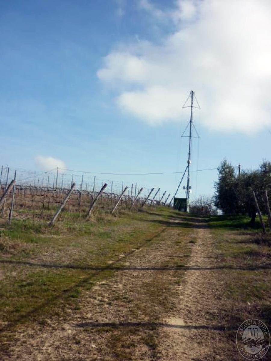 Cantine e terreni a CHIANCIANO TERME in Strada delle Cavine e Valli 27