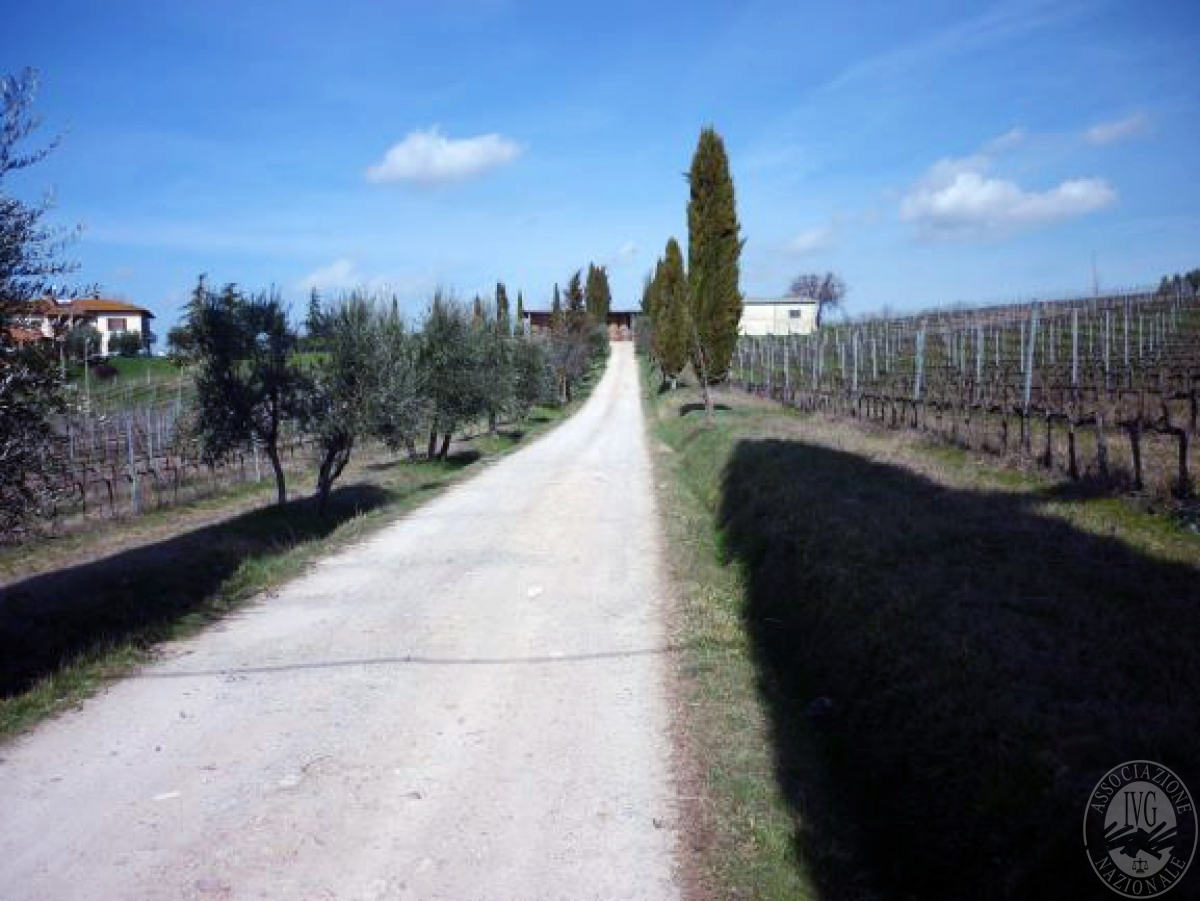 Cantine e terreni a CHIANCIANO TERME in Strada delle Cavine e Valli 33