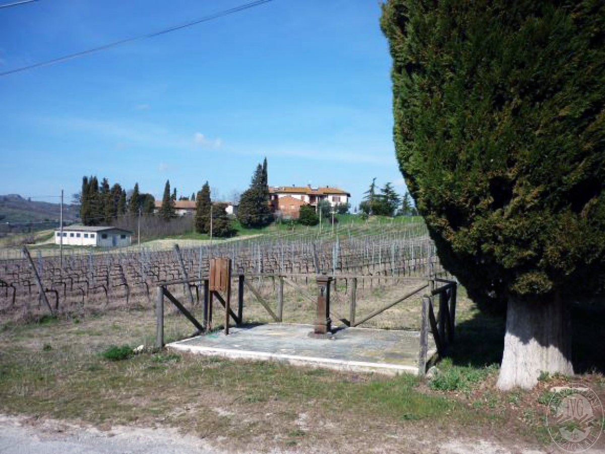 Cantine e terreni a CHIANCIANO TERME in Strada delle Cavine e Valli 35