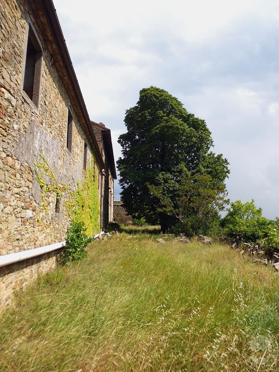Castello ad AREZZO in loc. Battifolle 55