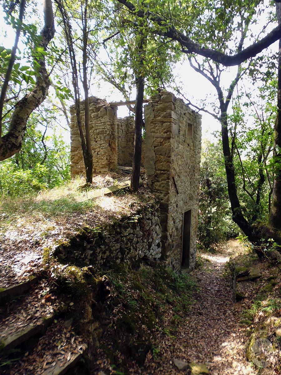 Castello ad AREZZO in loc. Battifolle 141