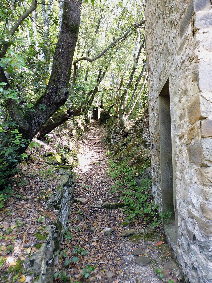 Castello ad AREZZO in loc. Battifolle 142
