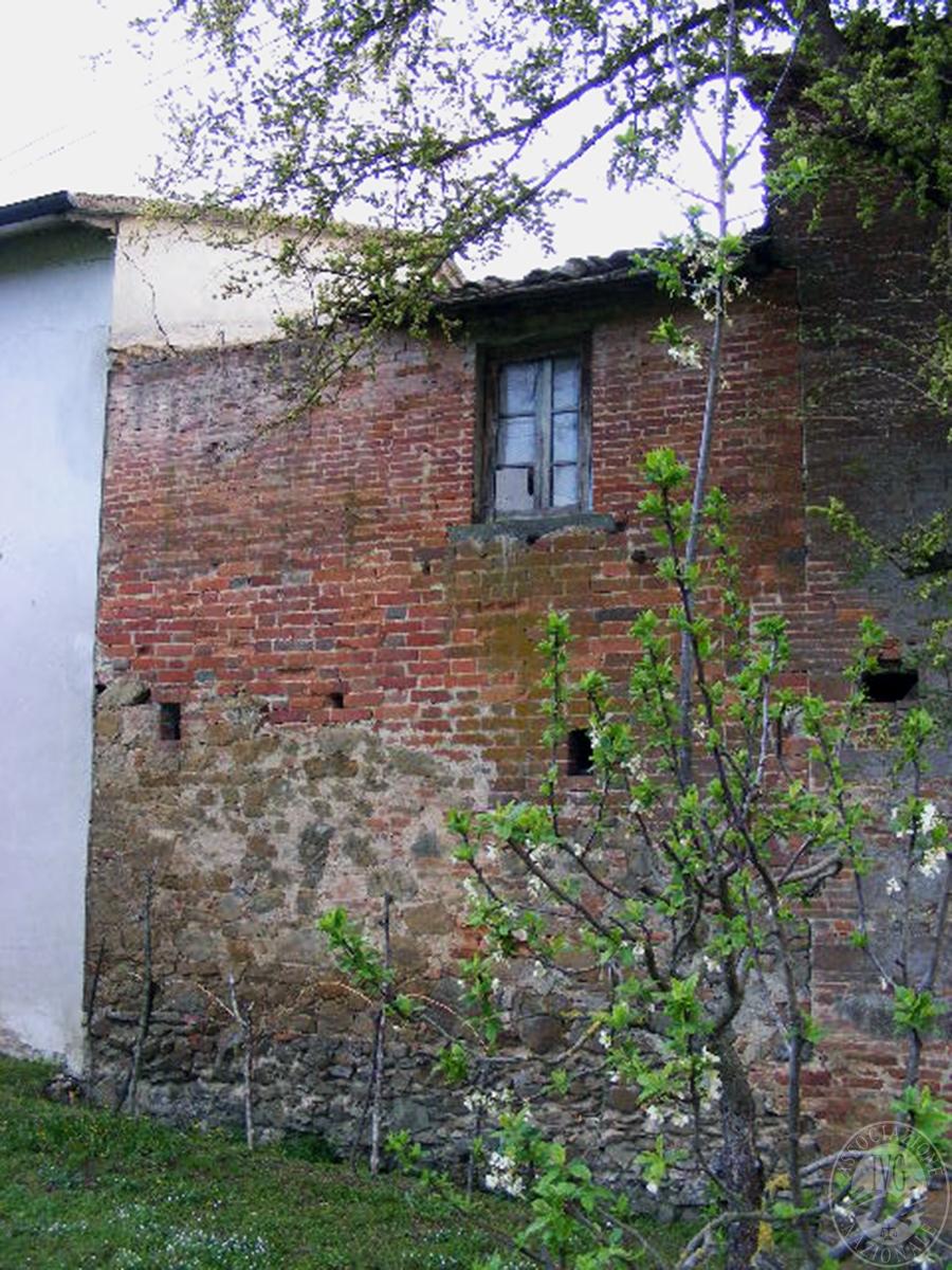 Fabbricati rurali e terreni in FOIANO DELLA CHIANA in Via Renaia - Lotto 2 5