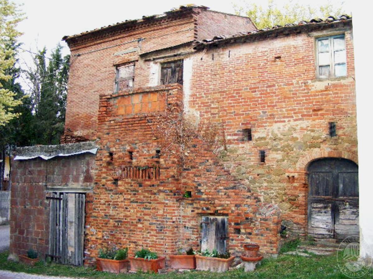 Fabbricati rurali e terreni in FOIANO DELLA CHIANA in Via Renaia - Lotto 2 4
