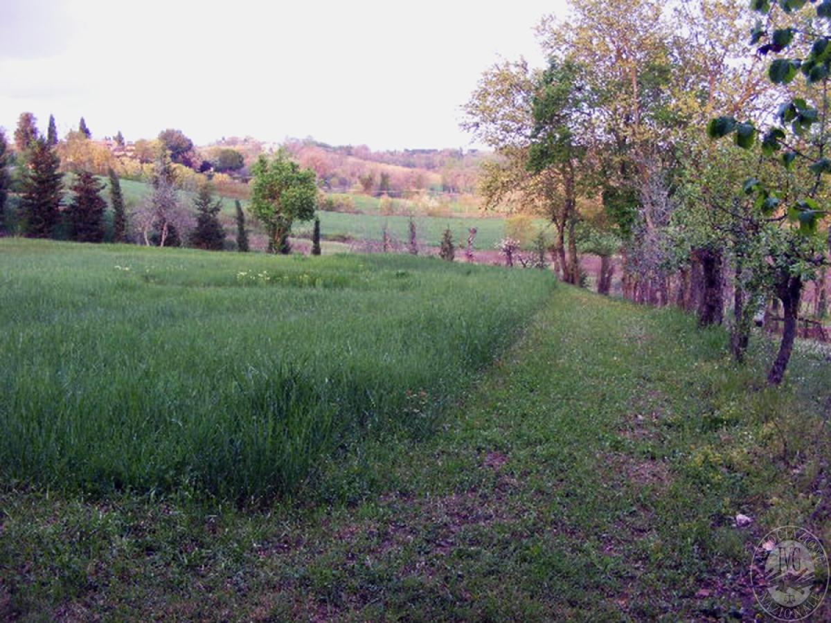 Fabbricati rurali e terreni in FOIANO DELLA CHIANA in Via Renaia - Lotto 2 8