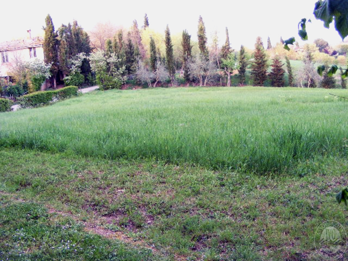 Fabbricati rurali e terreni in FOIANO DELLA CHIANA in Via Renaia - Lotto 2 7