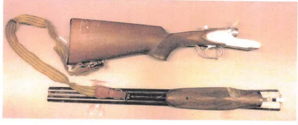 Fucile + carabina + caricatori, etc.   VENDITA ONLINE 2