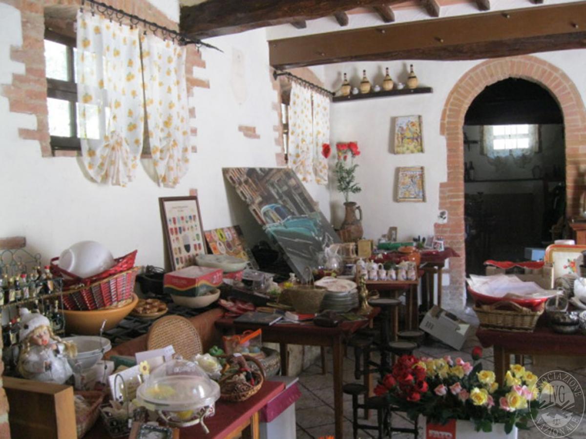 Locale commerciale a CASTELNUOVO BERARDENGA, via Paradiso - ex lotti 1 e 5+5a 3