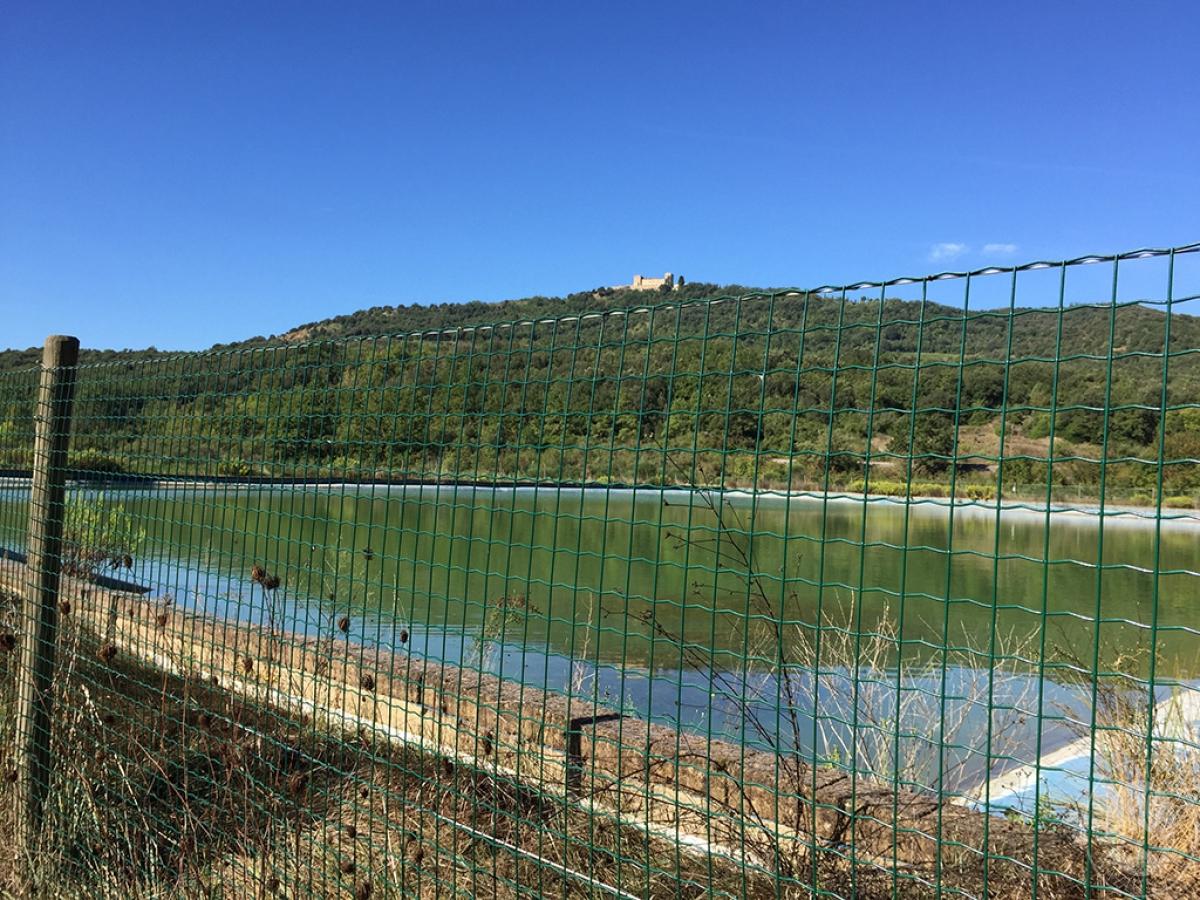 Vigneti e fabbricati agricoli a MONTALCINO in loc. Monte Amiata Scalo - Lotto 1 15