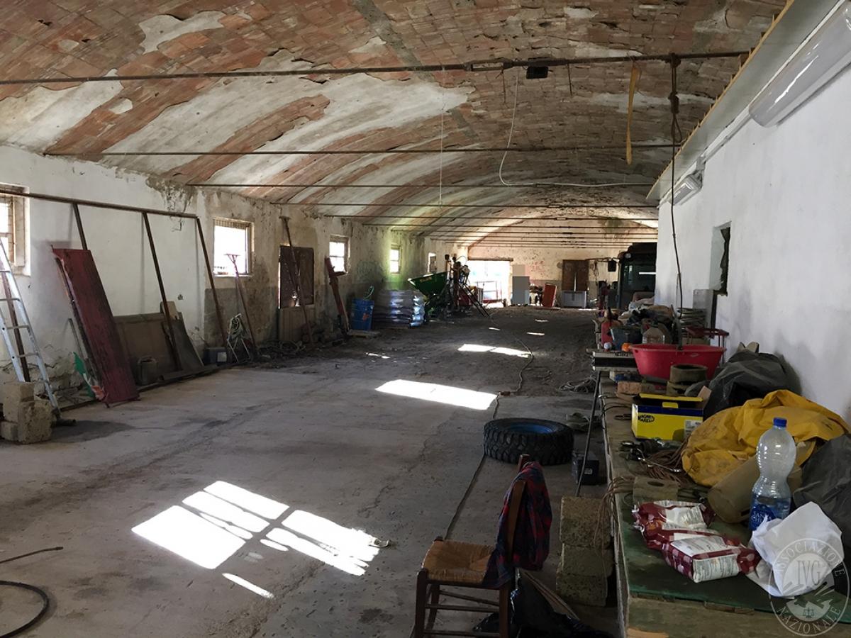 Vigneti e fabbricati agricoli a MONTALCINO in loc. Monte Amiata Scalo - Lotto 1 21