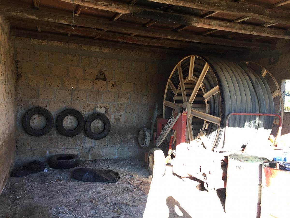 Vigneti e fabbricati agricoli a MONTALCINO in loc. Monte Amiata Scalo - Lotto 1 23