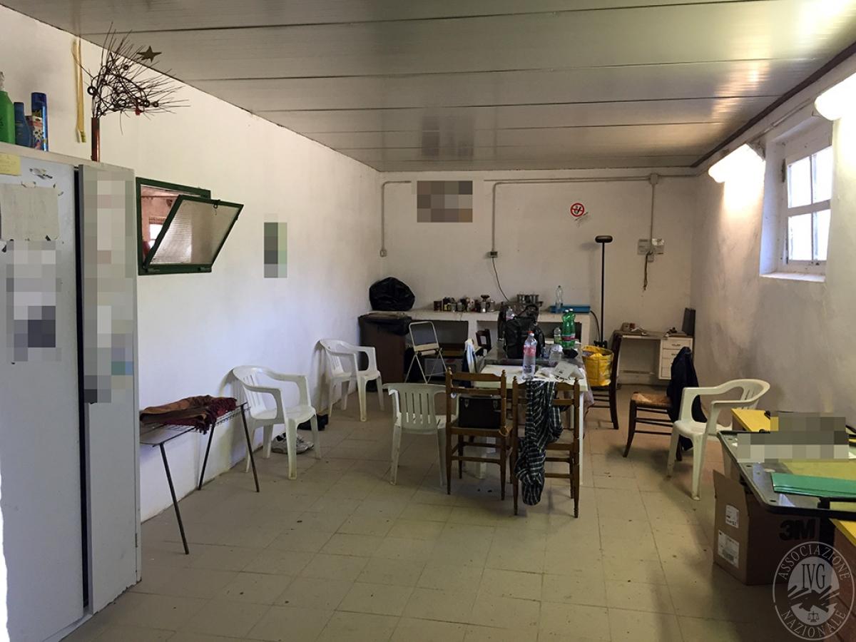 Vigneti e fabbricati agricoli a MONTALCINO in loc. Monte Amiata Scalo - Lotto 1 22