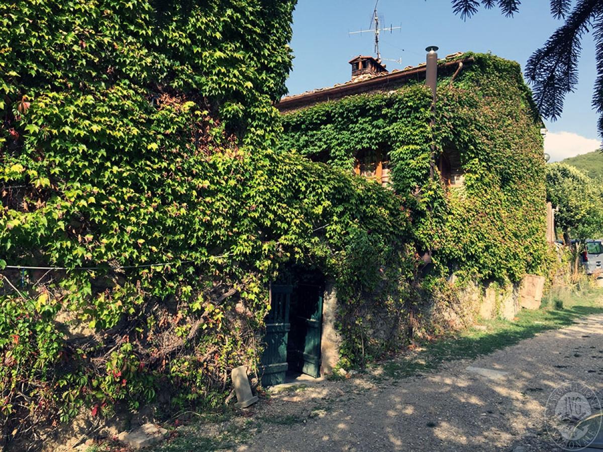 Colonica a CASTELLINA IN CHIANTI - Lotto 3 3