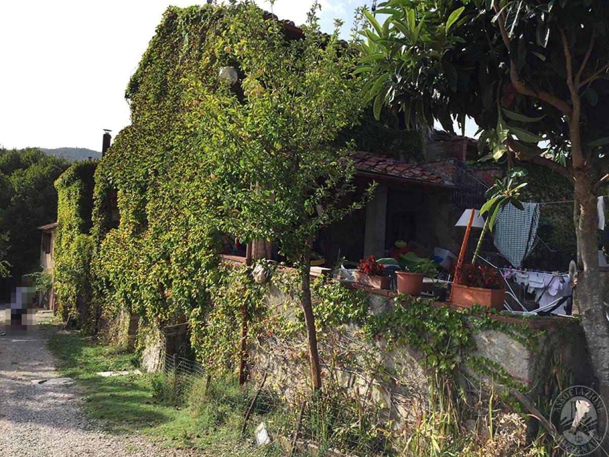 Colonica a CASTELLINA IN CHIANTI - Lotto 3 12