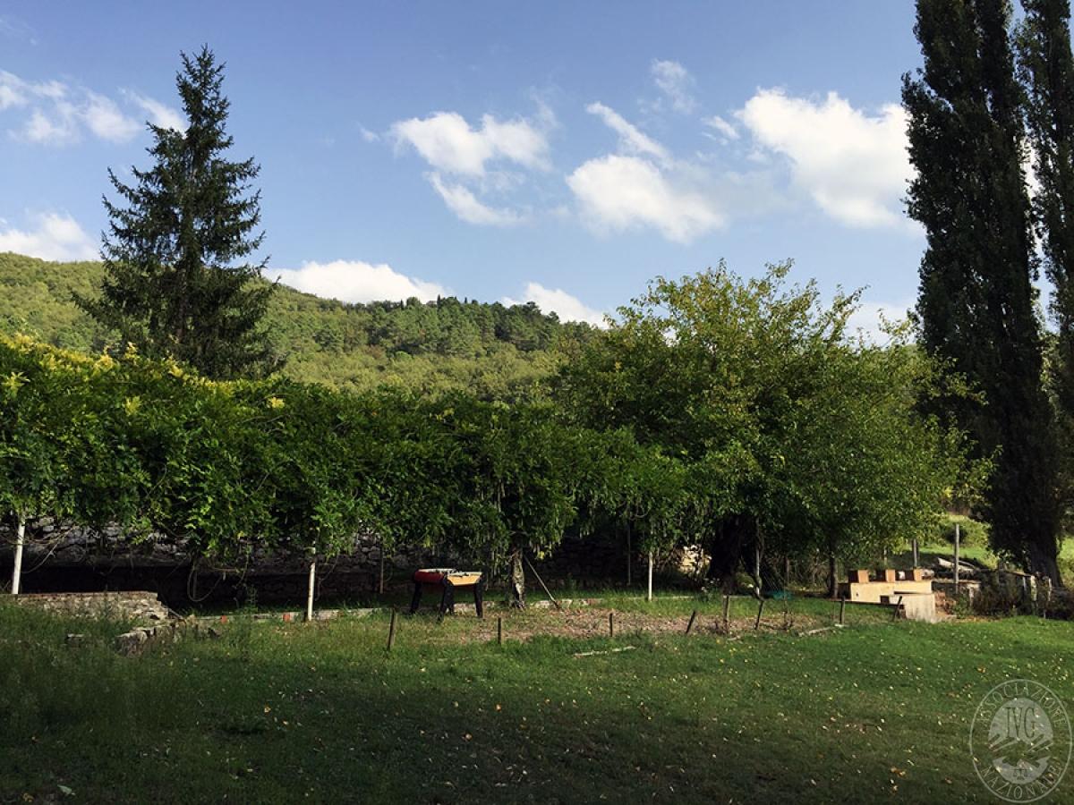 Terreni a CASTELLINA IN CHIANTI - Lotto 5