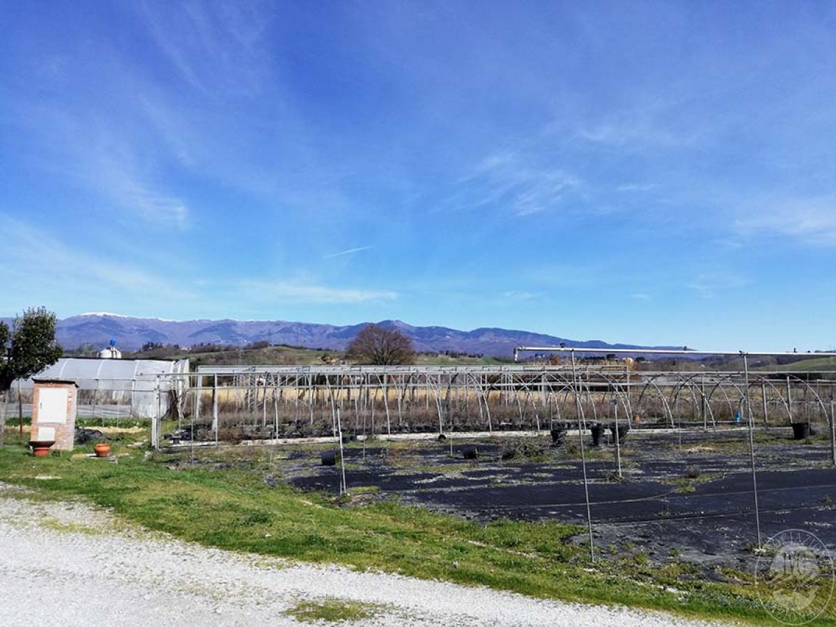 Terreni a MONTEVARCHI in Via delle Case Romole - Lotto 3 1