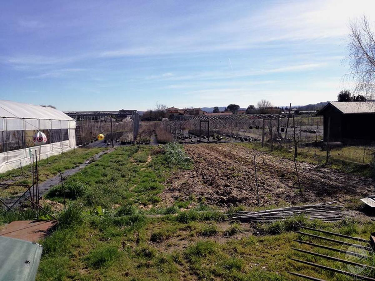 Terreni a MONTEVARCHI in Via delle Case Romole - Lotto 3 4