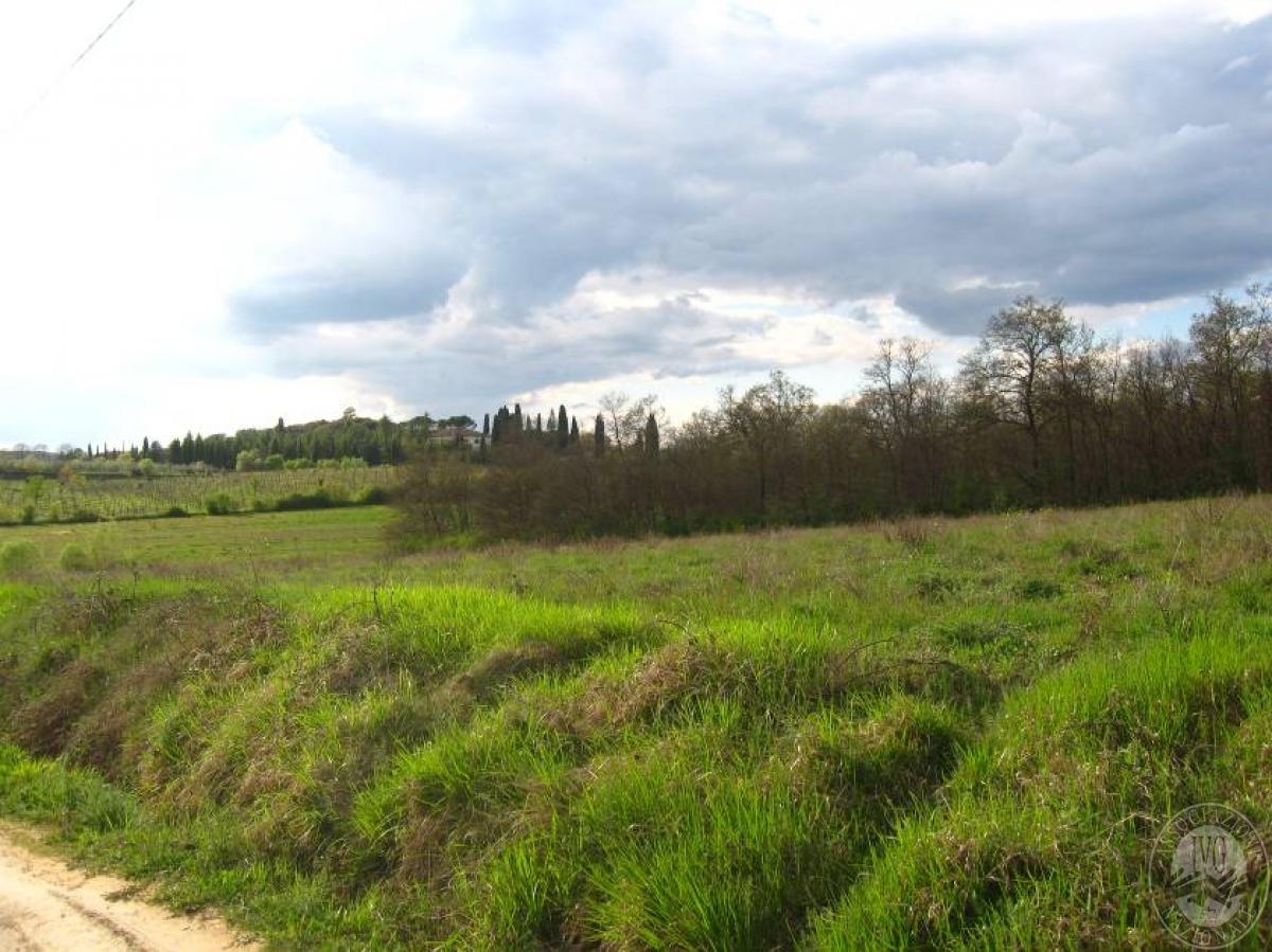 Terreni a SINALUNGA - LOTTO 17