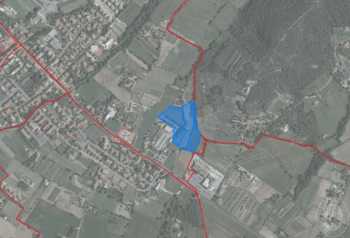 Terreni ad AREZZO, loc. rigutino - lotto 3
