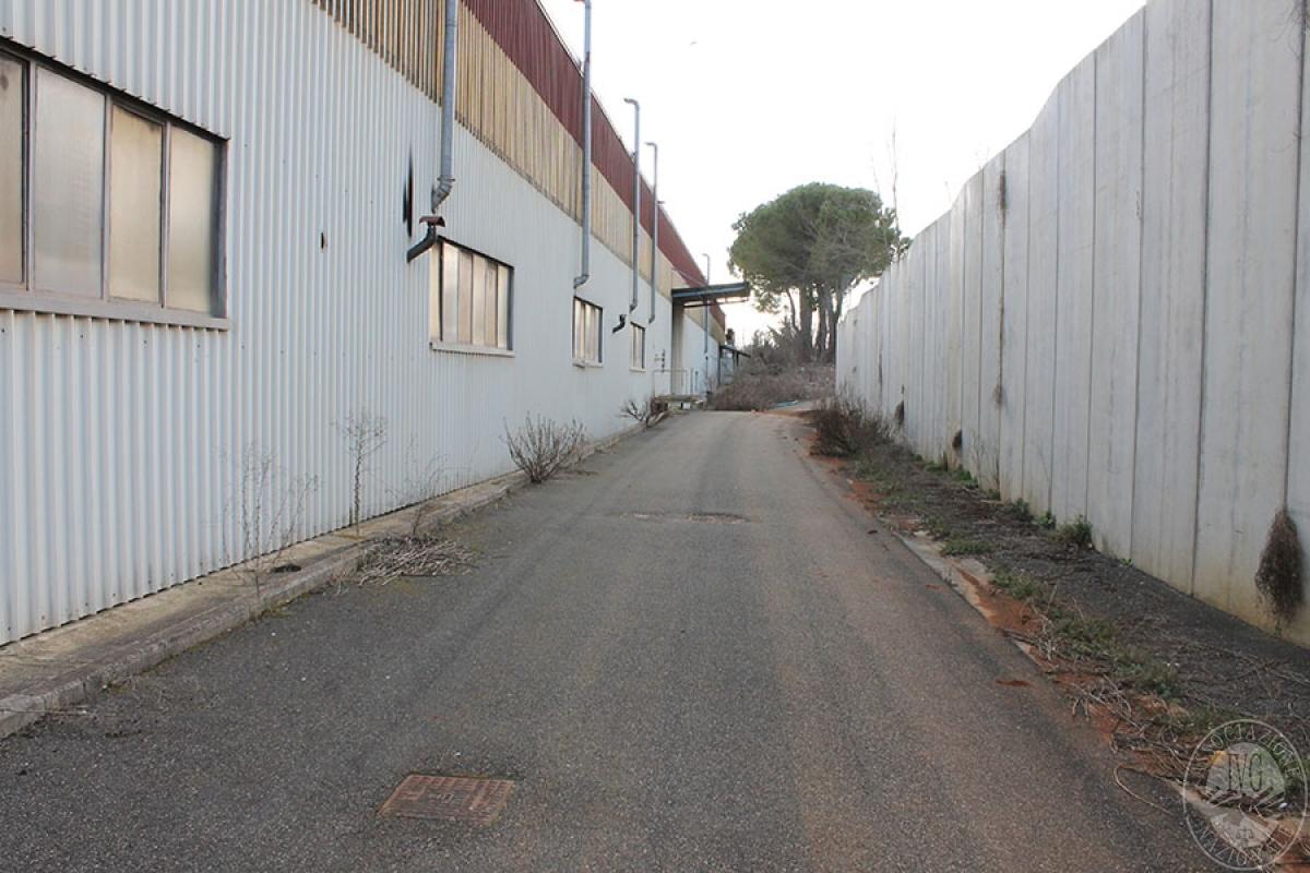 Opificio a MONTERIGGIONI, via del Casone - Lotto 2 9