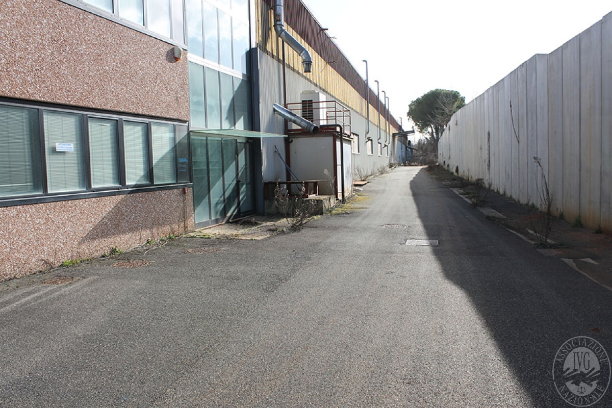 Capannone a MONTERIGGIONI, loc. Gabbricce  - Lotto 4 (ex D/E/F ) 17