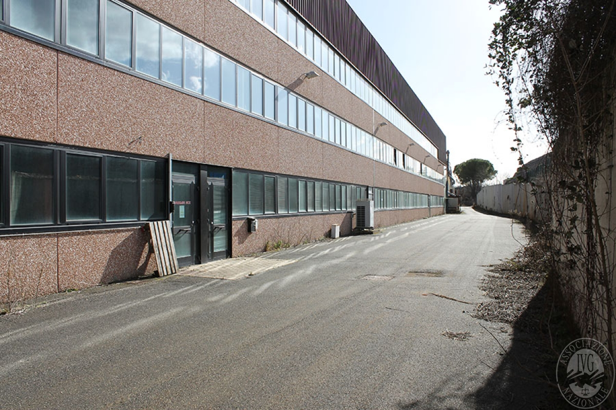Capannone a MONTERIGGIONI, loc. Gabbricce  - Lotto 4 (ex D/E/F ) 5