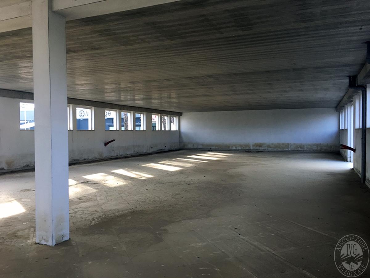 Edificio artigianale a MONTE SAN SAVINO - Lotto 3 in Viale Santa Maria delle Vertighe 3
