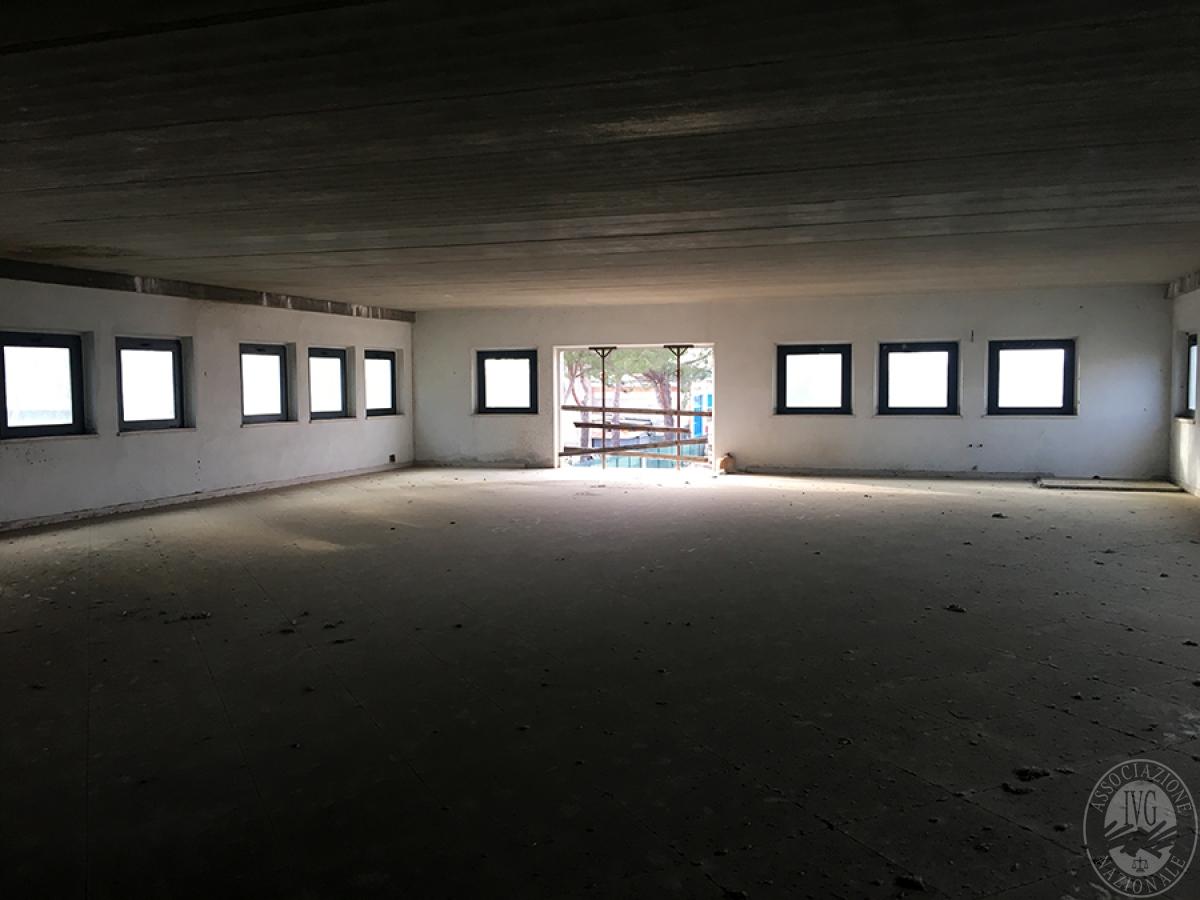 Edificio artigianale a MONTE SAN SAVINO - Lotto 3 in Viale Santa Maria delle Vertighe 17