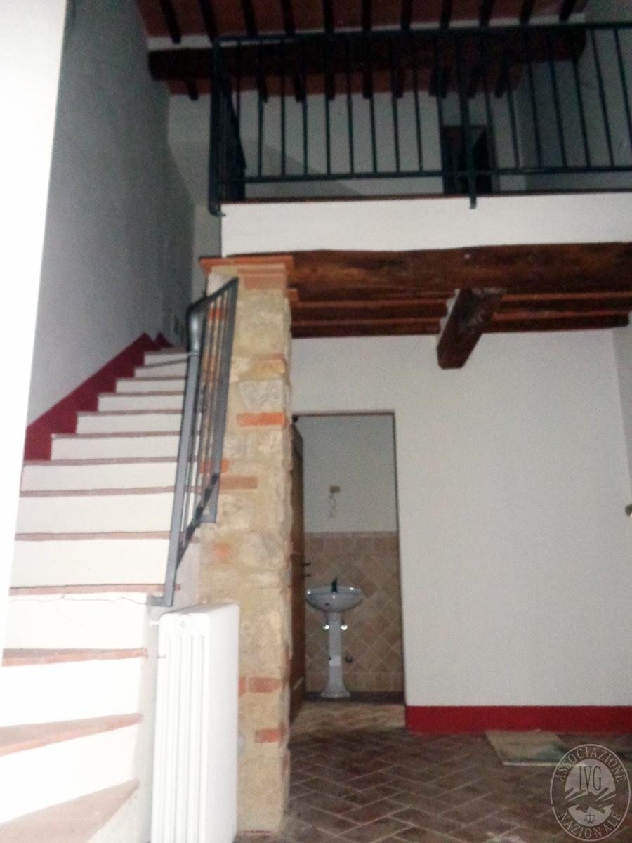 Appartamento ad ASCIANO loc. Il Fossaccio - Lotto 5 5