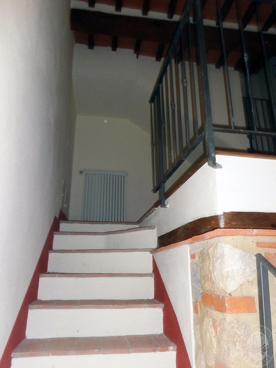 Appartamento ad ASCIANO loc. Il Fossaccio - Lotto 5 6