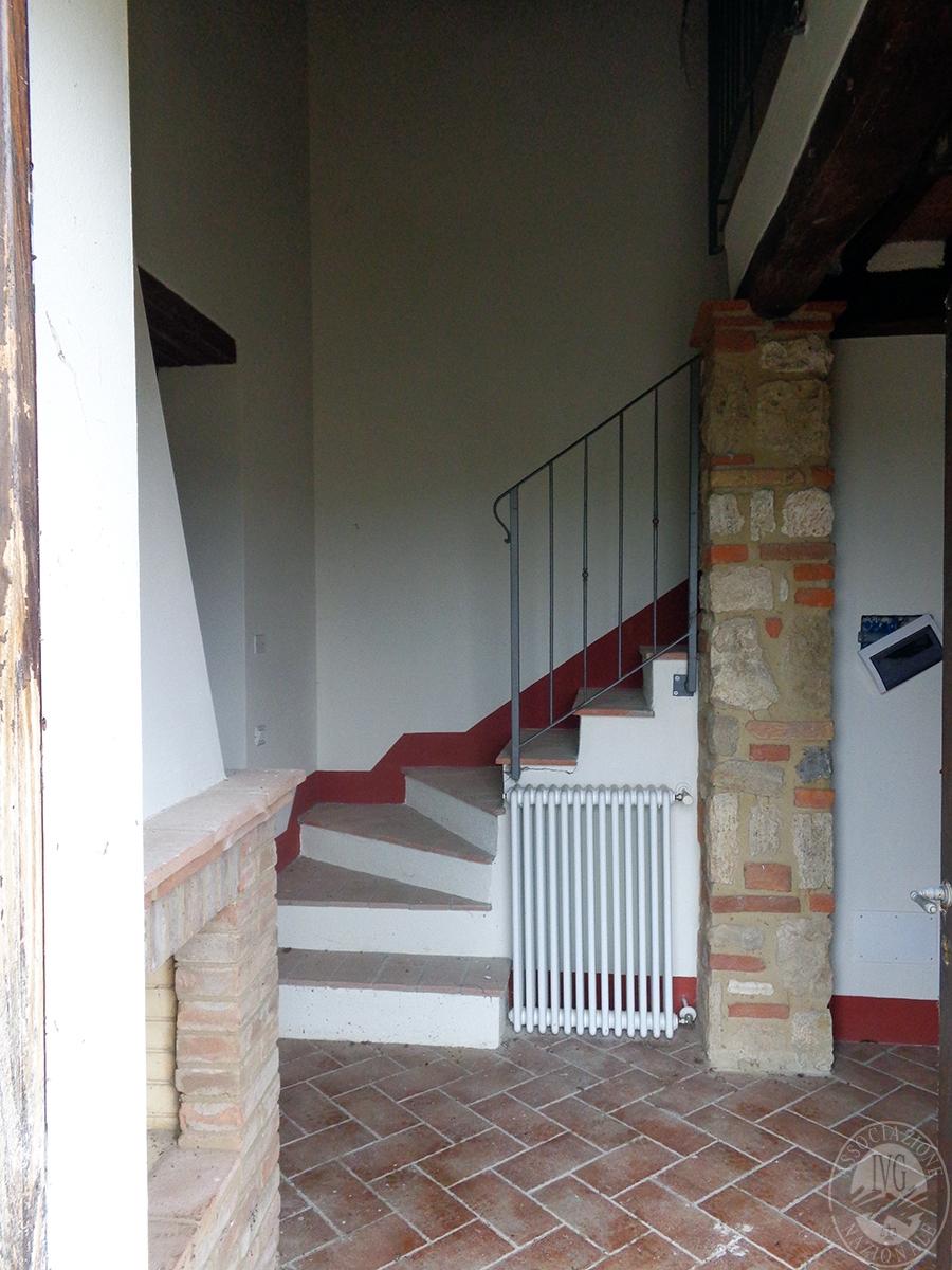 Appartamento ad ASCIANO loc. Il Fossaccio - Lotto 5 11
