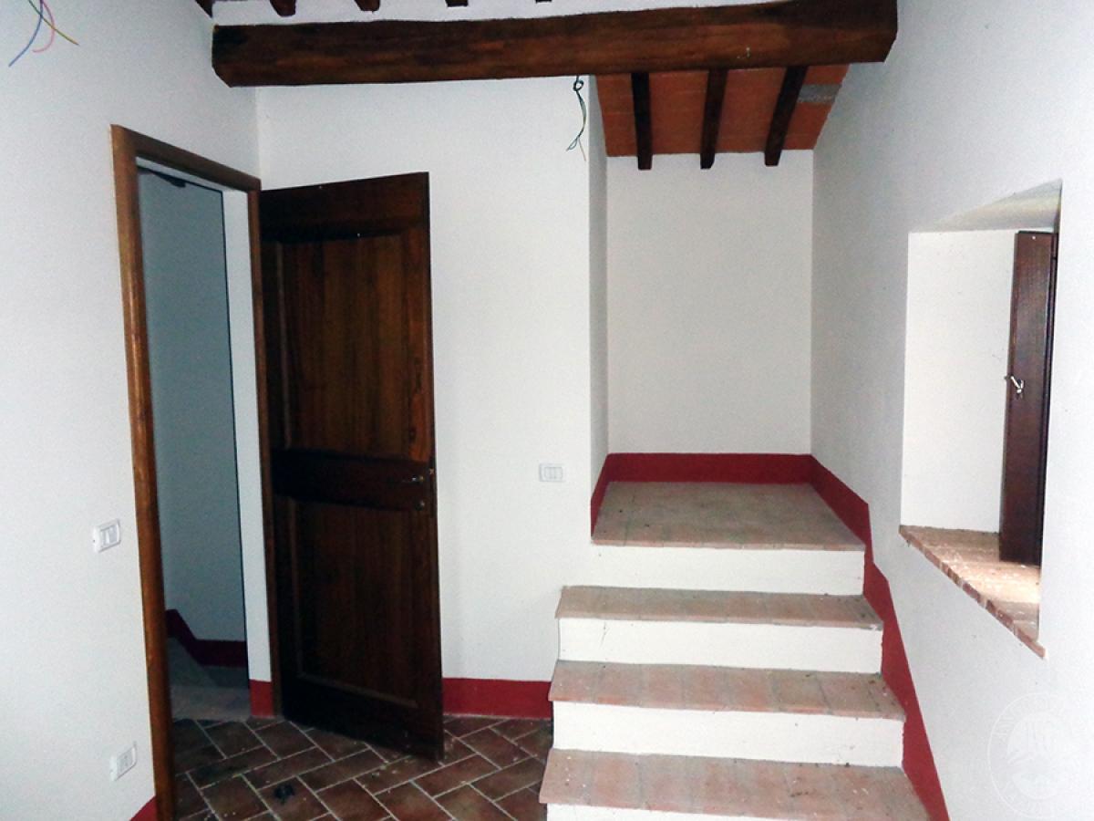 Appartamento ad ASCIANO loc. Il Fossaccio - Lotto 5 10