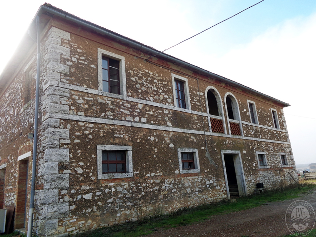 Appartamenti, magazzini, terreni ad ASCIANO in loc. Pianella