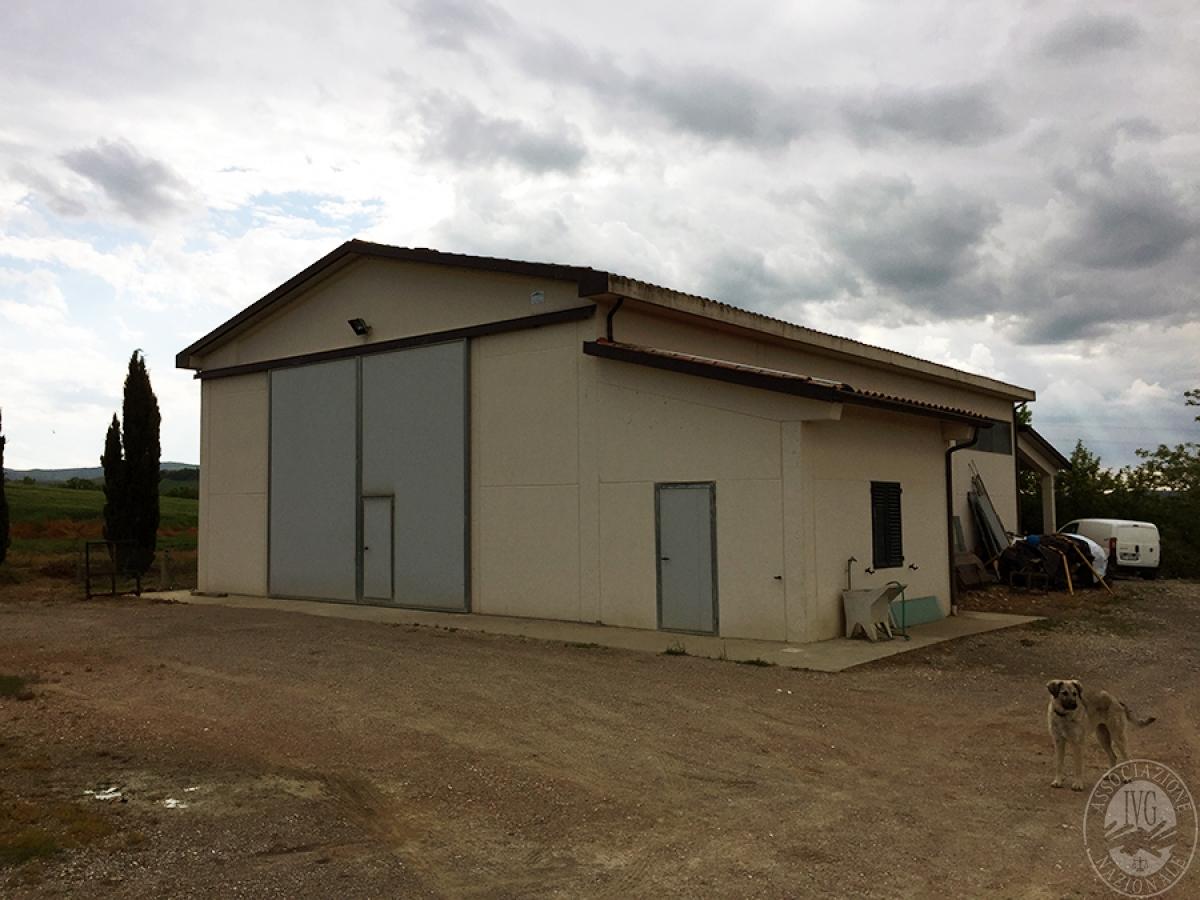 Capannone agricolo a CASTIGLION D'ORCIA - Lotto 2