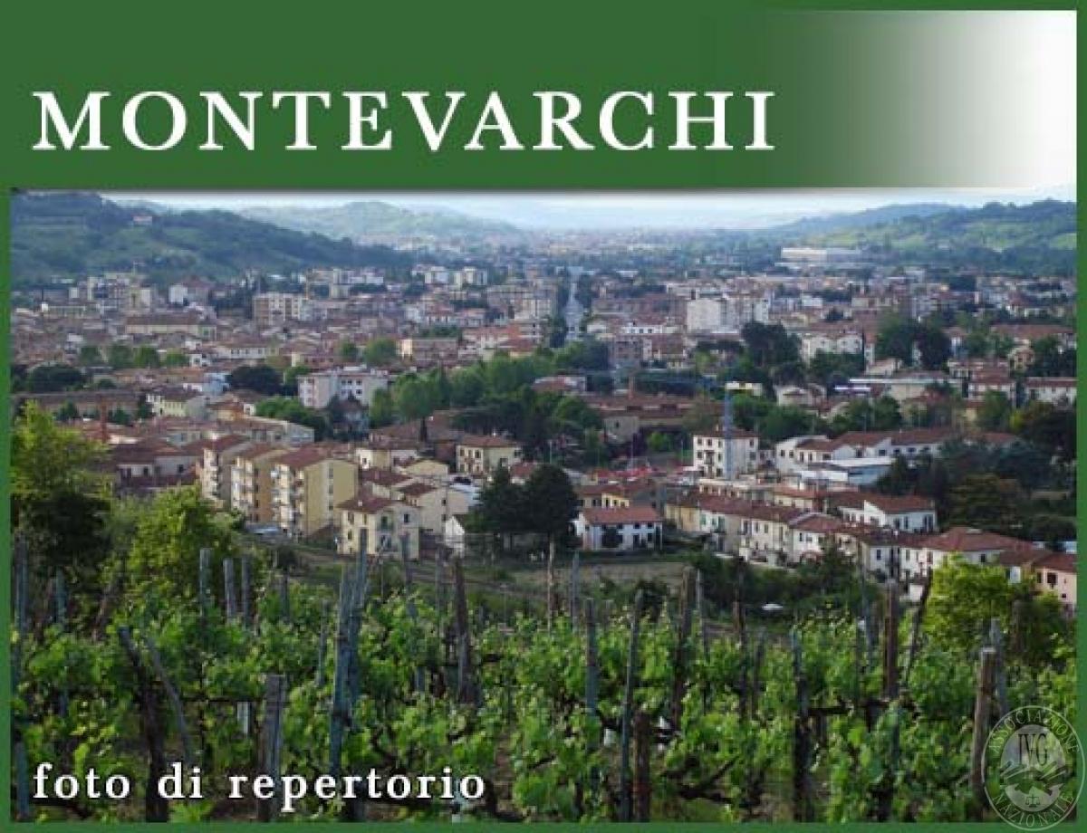 Terreno a MONTEVARCHI in loc. Fornacina - Lotto 5