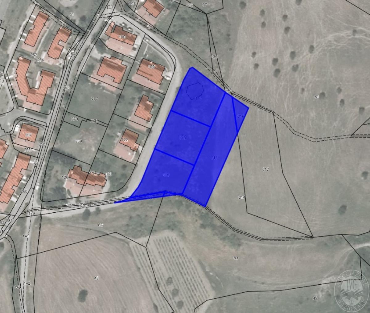 Terreni edificabili a RADICOFANI in loc. Contignano - Lotto 2