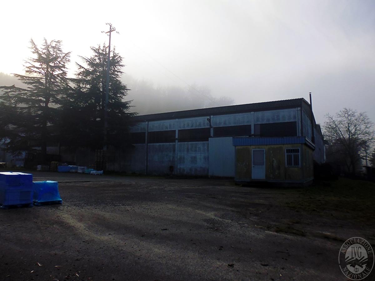 Capannone industriale a BIBBIENA - Lotto H